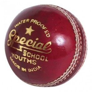 Readers Youth Leather Cricket Ball