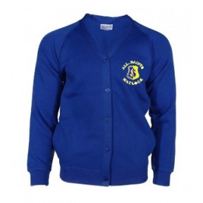 All Saints Royal Blue Cardigan